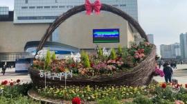 동대구역 광장에 꽃바...